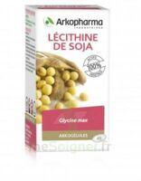 Arkogélules Lécithine de soja Caps Fl/150 à MONTPELLIER