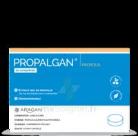 Aragan Propalgan Comprimés orodispersibles adulte B/20 à MONTPELLIER