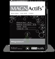 Synactifs Magnactifs Gélules B/60 à MONTPELLIER