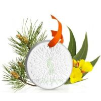 Puressentiel Diffusion Diffuseur Céramique galet médaillon pour Huiles Essentielles à MONTPELLIER