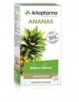 Arkogélules Ananas Gélules Fl/45 à MONTPELLIER