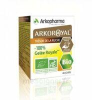Arkoroyal 100% Gelée royale bio Gelée Pot/40g à MONTPELLIER