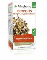 Arkogélules Propolis Bio Gélules Fl/45 à MONTPELLIER