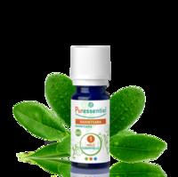 Puressentiel Huiles essentielles - HEBBD Ravintsara BIO* - 5 ml à MONTPELLIER