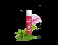Puressentiel Anti-pique Roller Apaisant Anti-Pique - 5 ml à MONTPELLIER