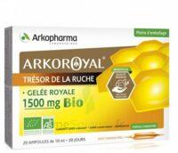 Arkoroyal Gelée royale bio 1500 mg Solution buvable 20 Ampoules/10ml à MONTPELLIER