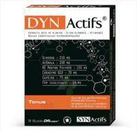 Synactifs Dynactifs Gélules B/30 à MONTPELLIER