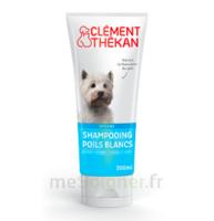 Clément Thékan Shampooing poils blancs T/200ml à MONTPELLIER
