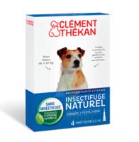 Clément Thékan Spot-on Solution externe petit chien 4 Pipettes/2,5ml à MONTPELLIER